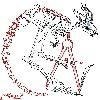 Ligers-mane's avatar