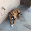 lighter022's avatar