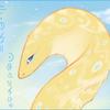 Lightfeather123456's avatar
