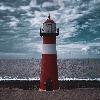 lighthouse-adopts's avatar