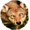 lilfaolrua's avatar