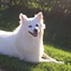 lili023's avatar