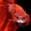 Liliang80's avatar