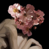 LilliahCampagna's avatar