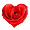 Lilykit247's avatar