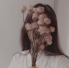 LinaWolowitz's avatar