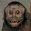 linkhero55's avatar