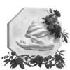 Lisawin's avatar