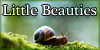 Little-Beauties's avatar