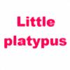 little-platypus's avatar