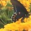littlemustangfilly's avatar