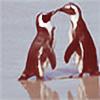 littlestpenguin's avatar