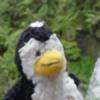 livenover's avatar