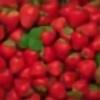 livia88's avatar