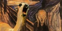 LlamaHunters's avatar