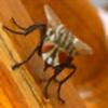 locksmith11478's avatar