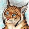 lokimut's avatar