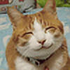 lol70720's avatar
