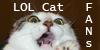 LOLcat-fans