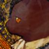 Lolitalove2B's avatar