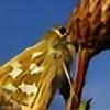 LoneCedarPhotography's avatar