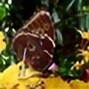lora1303's avatar