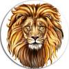 lordanakin5555's avatar