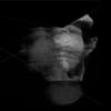 lorenzo-quadri's avatar