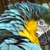 LoriSilverstar's avatar