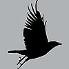 LorrieWhittington's avatar