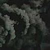 Lost-Shadow-Creature's avatar