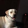 LostVirgo's avatar