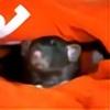 lottefotografie's avatar