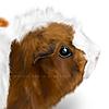 LourdesMartin's avatar