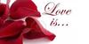 Love-is-Photograhy's avatar