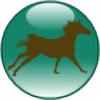 lovehorseslove1's avatar