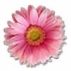 LovelyPinkDaisy's avatar