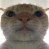 LowFeelsBlvd's avatar
