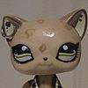 lpsCutes's avatar