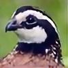 Luizkodorna's avatar