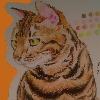 Lumicomet's avatar