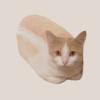 LunaGear's avatar