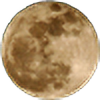 LunaMoon-seal's avatar