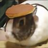 LunchboxAz's avatar