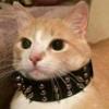 Lyisscho's avatar