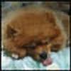 m0onzz's avatar