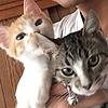 M3HUITZIL's avatar