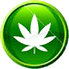 M4XP4YN3's avatar
