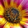 mackyster's avatar