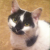 Macor6's avatar